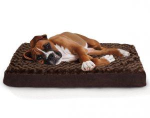 camas para perros,ortopédico,,camas para perros con sobredosis