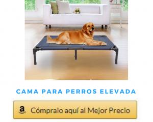 Cama para Perros elevada